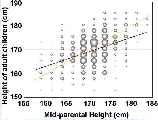 Régression vers la moyenne pour la taille des enfants en fonction de la taille des parents