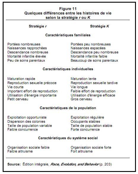 Perspective comparative de Rushton, QI et Intelligence Humaine
